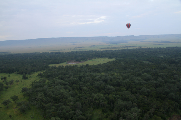 baloonn.jpg